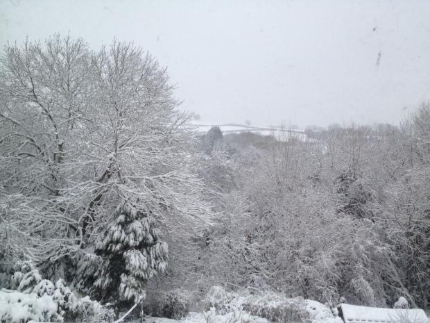 SnowJan203-3