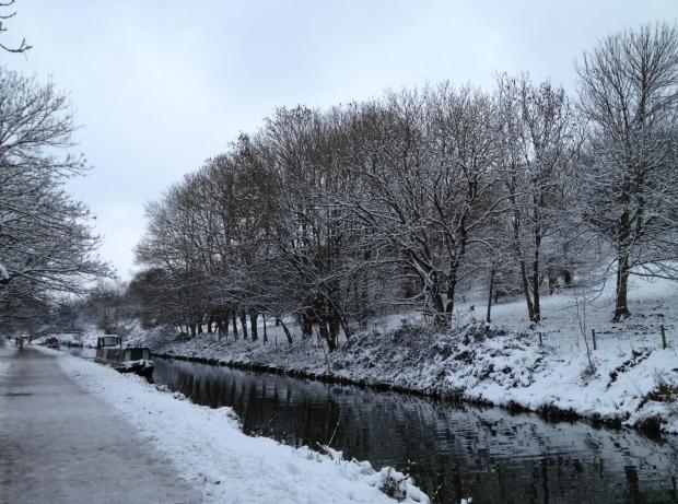 SnowJan2013-6