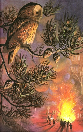 owl and bonfire